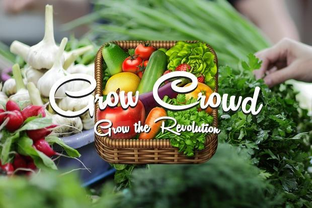Images from Grow Crowd