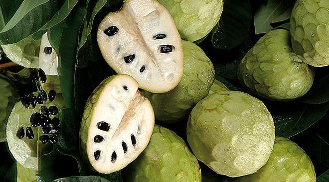 Images from Cherimoya Liqueur CHIRY