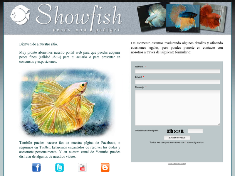 Images from Show Fish