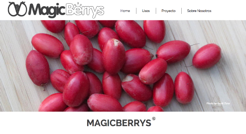 Images from MagicBerrys