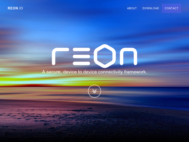 Images from REON.io