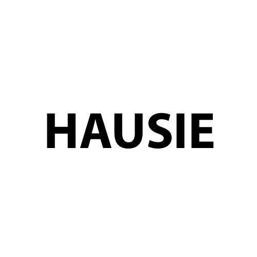 Images from HAUSIE