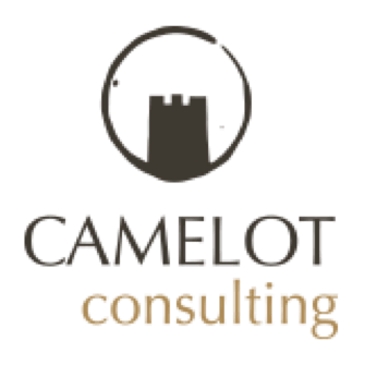 Camelot Consulting