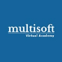 Multisoft Virtual Academy