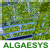 Algaesys Limited