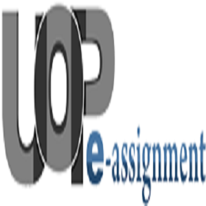 UOP E Assignments - ECO 365 Final Exam