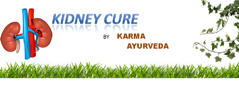 Images from Karma Ayurveda