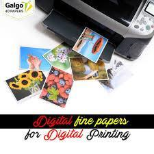 Images from Galgo4d Paper