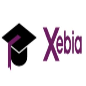 Xebia IT Architects India Private Limited