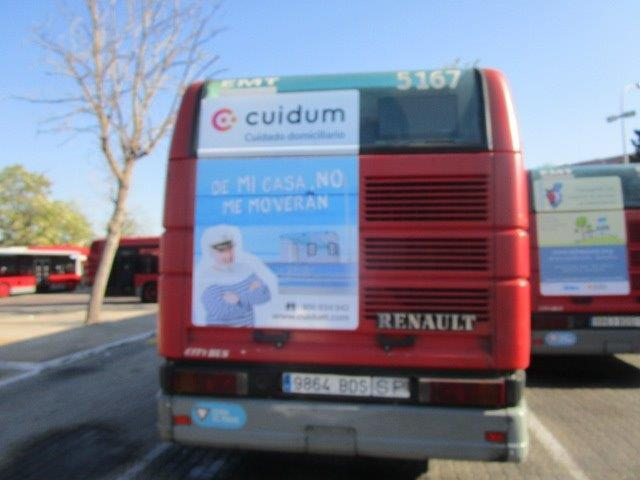 Images from Cuidum
