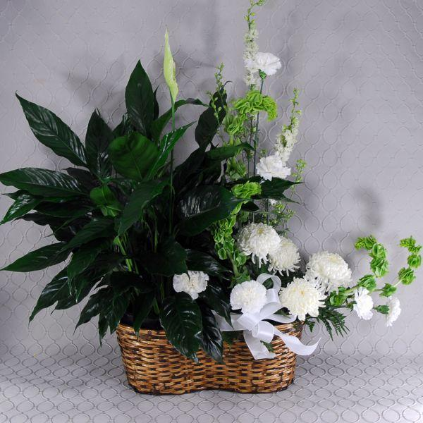 Images from Roberts Floral & Gifts